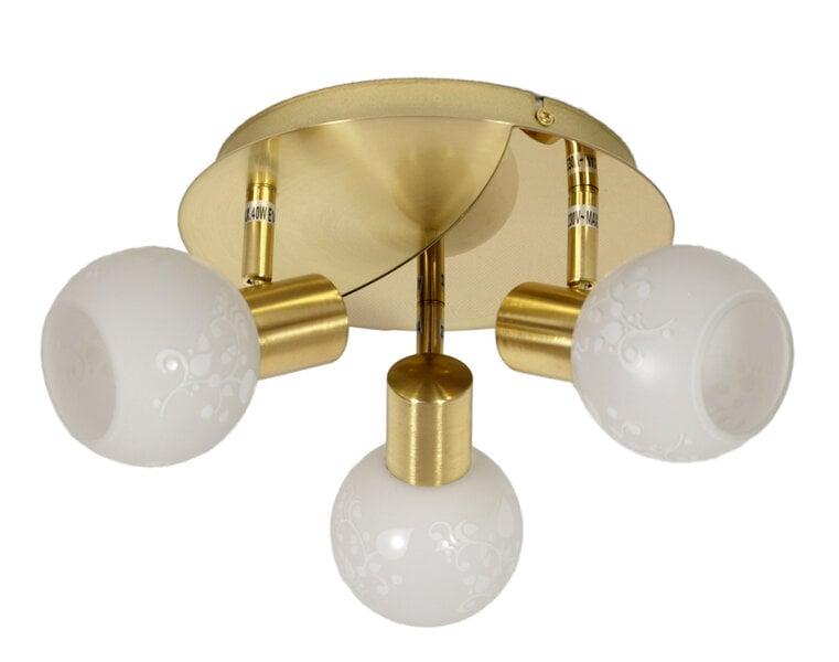 Griestu lampa Avila Gold III cena un informācija | Griestu lampas | 220.lv
