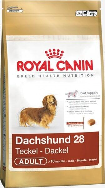 Suņu barība Royal Canin Dachshund Adult 0,5 kg cena un informācija | Sausā barība suņiem | 220.lv