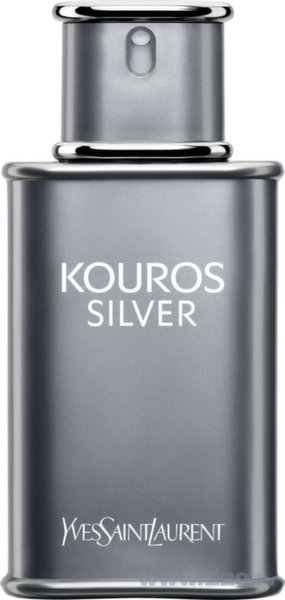 Туалетная вода Yves Saint Laurent Kouros Silver EDT 100 мл цена и информация | Vīriešu smaržas | 220.lv