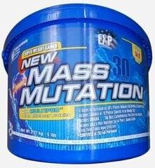 Uztura bagātinātājs Megabol New Mass Mutation, 2,27 kg cena un informācija | Uztura bagātinātāji muskuļu masas palielināšanai | 220.lv