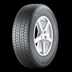 Gislaved EuroFrost 6 215/55R17 98V XL cena un informācija | Vissezonas riepas | 220.lv