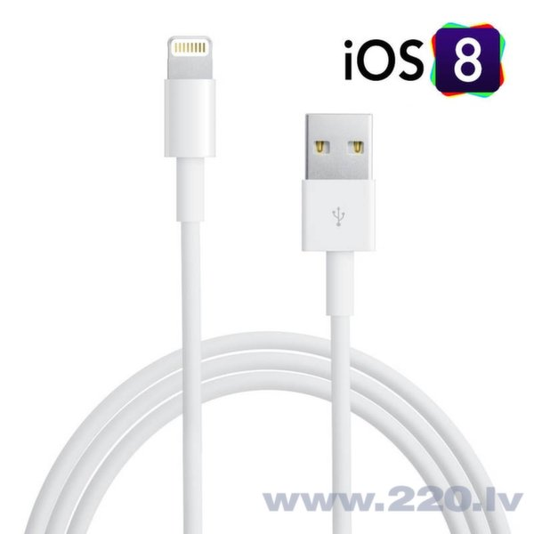 GT Lightning to USB Кабель Данных и Заряда for iPhone 5 5S 5C 6 Plus iPad mini iOs 8x (Analog MD818ZM/A) цена и информация | Lādētāji un savienotājkabeļi | 220.lv
