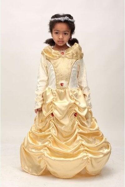 Princeses kleita cena un informācija | Karnevāla kostīmi, maskas un parūkas | 220.lv
