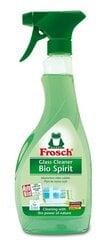Stiklu tīrīšanas līdzeklis ar spirtu Frosch 500 ml cena un informācija | Stiklu tīrīšanas līdzeklis ar spirtu Frosch 500 ml | 220.lv
