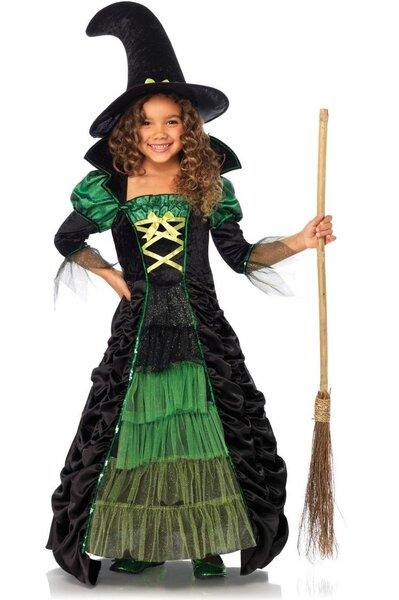 Raganas kleita cena un informācija | Karnevāla kostīmi, maskas un parūkas | 220.lv