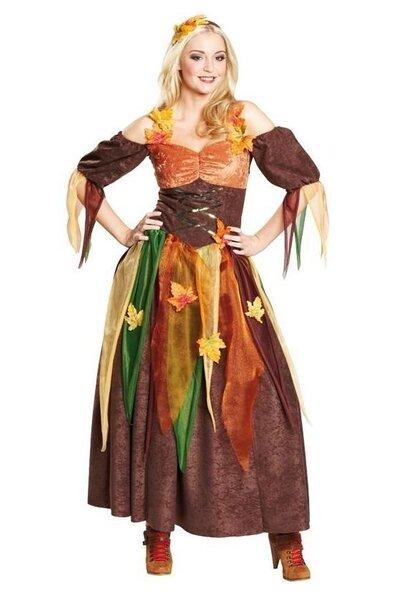 Rudens princešu kleita cena un informācija | Karnevāla kostīmi, maskas un parūkas | 220.lv