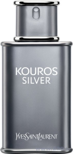 Туалетная вода Yves Saint Laurent Kouros Silver EDT 50 мл цена и информация | Vīriešu smaržas | 220.lv