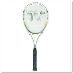 Tenisa raķete ārpus telpu spēlēm Alumtec 2509 WISH 686mm cena un informācija | Teniss | 220.lv