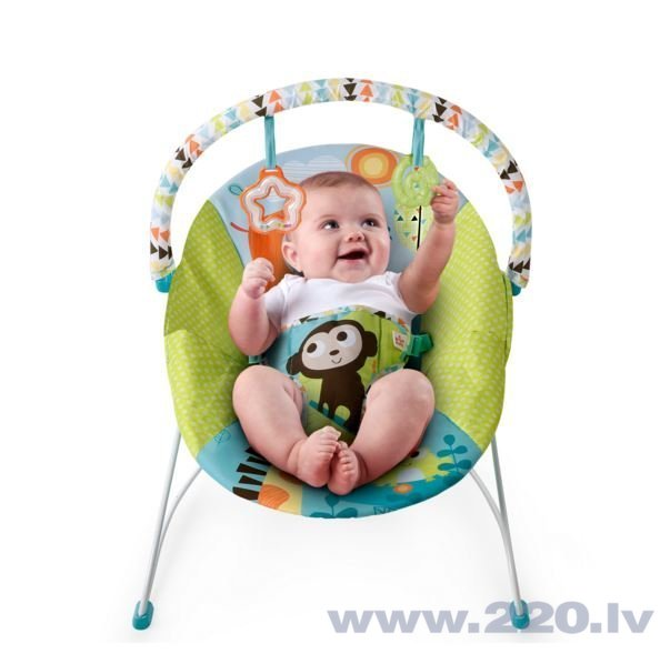 Bērnu šūpuļkrēsls Bright Starts 60725