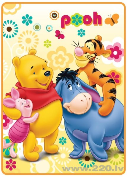 Детский плед Winnie the Pooh (Винни-Пух) цена и информация | Dekoratīvie gultas pārklāji un pledi | 220.lv