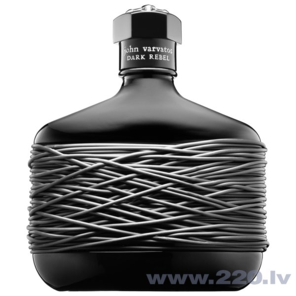 Туалетная вода John Varvatos Dark Rebel edt 75 мл цена и информация | Vīriešu smaržas | 220.lv