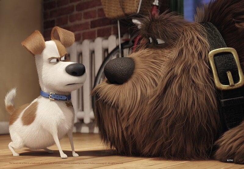 Пазл Ravensburger Secret Life of Pets 2x24 детали, 091102