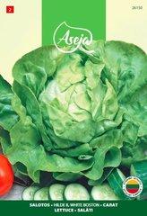 Salāti Lettuce/ Hilde II, White Boston, ASEJA, 3g, 26150( 2 ) cena un informācija   Dārzeņu, ogu sēklas   220.lv