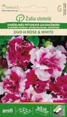 Daudzziedu petūnija Duo H Rose & White cena un informācija | Puķu sēklas | 220.lv