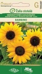 Saulespuķes Bambino cena un informācija | Saulespuķes Bambino | 220.lv
