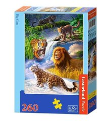 Puzle Castorland Big Cats 260 det.