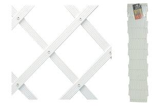 Žogs Xpert 100 x 230 cm