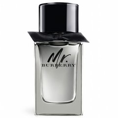 Tualetes ūdens Burberry Mr. Burberry edt 100 ml