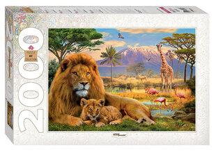 "Puzle Step Puzzle 2000 ""Lauva"" cena un informācija | Puzle Step Puzzle 2000 ""Lauva"" | 220.lv"