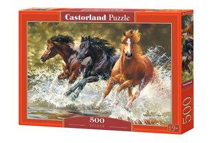 Пазл Castorland Splash, 500 шт. цена и информация | Пазлы, 3D пазлы | 220.lv