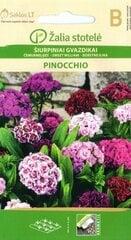 Čemurneļķes Pinocchio cena un informācija | Puķu sēklas | 220.lv