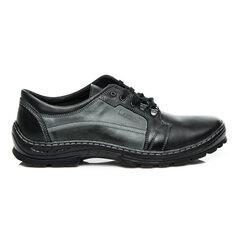 Dabīgās ādas vīriešu apavi Lucca