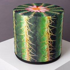 Pufs Kaktuss
