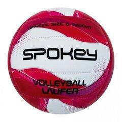 Volejbola bumba Spokey Laufer