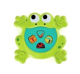 Vannas rotaļlieta-šķirotājs pabarojiet vardi Hape, E0209