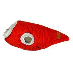 Amibelle ūdensnecaurlaidīga sporta jaka Red, L cena un informācija | Apģērbi suņiem | 220.lv