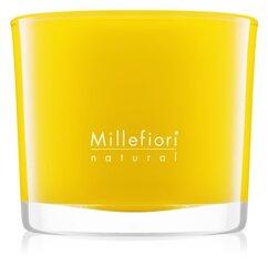 Aromātiskā svece Millefiori Pompelmo 180 g