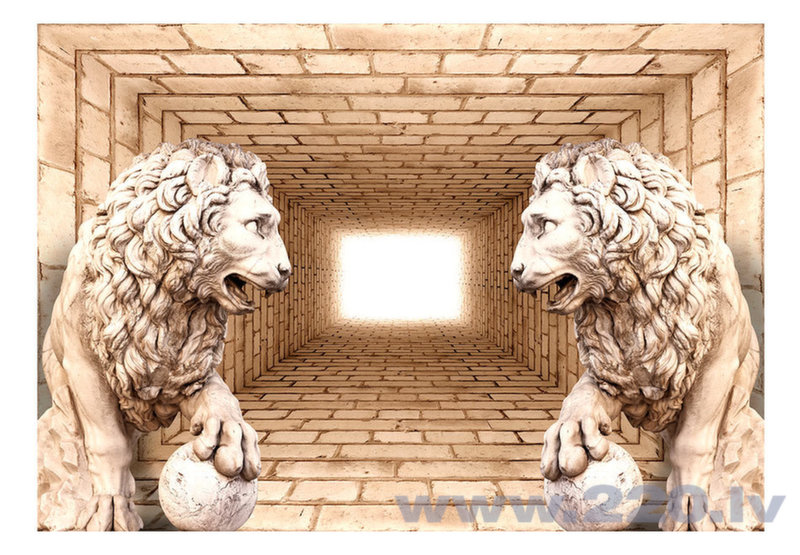 Foto tapete - Mystery of lions