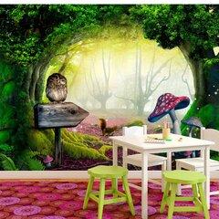 Foto tapete - Owlish corner cena un informācija | Fototapetes | 220.lv