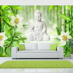 Foto tapete - Buddha and nature