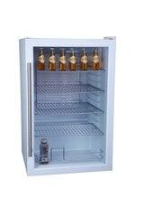 Guzzanti GZ-117A cena un informācija | Vīna ledusskapis | 220.lv