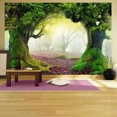 Fototapetes - Burvīgais mežs cena un informācija | Fototapetes | 220.lv