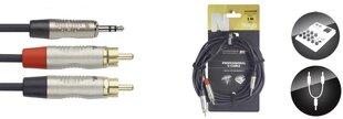 Jack 3,5 stereo 2xRCA, 3 m cena un informācija | Jack 3,5 stereo 2xRCA, 3 m | 220.lv
