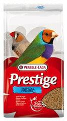 Barība eksotiskiem putniem Versele - Laga, 1 kg kaina ir informacija | Barība eksotiskiem putniem Versele - Laga, 1 kg | 220.lv