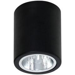 Luminex потолочный светильник Downlight Round цена и информация | Luminex потолочный светильник Downlight Round | 220.lv