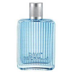 Tualetes ūdens David Beckham The Essence edt 30 ml