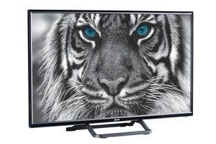 eSTAR LEDTV32D4T2 cena un informācija | Televizori | 220.lv