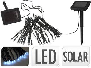 Dārza vītne ar saules bateriju, 50 LED cena un informācija | Dārza vītne ar saules bateriju, 50 LED | 220.lv