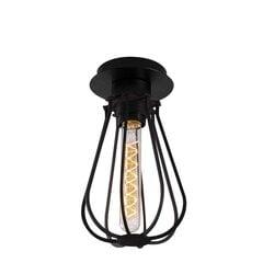 Opviq Alby griestu gaismeklis Fetiye - N-1117 cena un informācija | Griestu lampas | 220.lv
