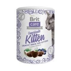 Brit Care gardums Superfruits Kitten, 100 g cena un informācija | Gardumi kaķiem | 220.lv