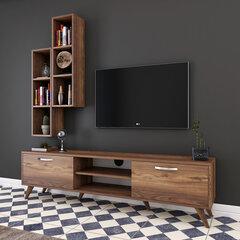 Sekcija Kalune Design M15, brūna cena un informācija | Sekcijas | 220.lv