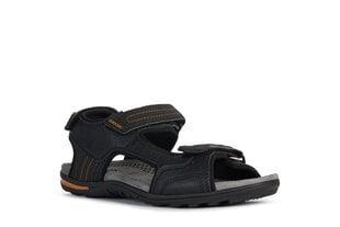 Geox Vīriešu Sandales cena un informācija | Vīriešu apavi | 220.lv