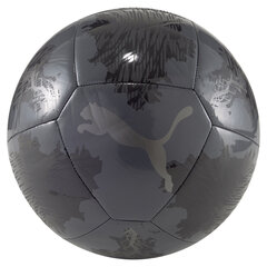 Futbola bumba Puma Spin, melna cena un informācija | Futbola bumbas | 220.lv
