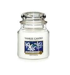 Aromātiskā svece Yankee Candle Medium Jar Midnight Jasmine 411 g cena un informācija | Aromātiskā svece Yankee Candle Medium Jar Midnight Jasmine 411 g | 220.lv