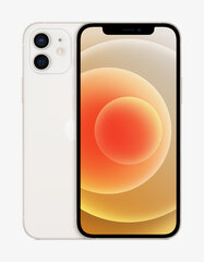 Apple iPhone 12, 128 ГБ, White цена и информация | Apple iPhone 12, 128 ГБ, White | 220.lv