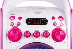 Karaoke sistēma ar CD un 2 mikrofoniem rozā krāsā FENTON SBS30P cena un informācija | Karaoke sistēma ar CD un 2 mikrofoniem rozā krāsā FENTON SBS30P | 220.lv
